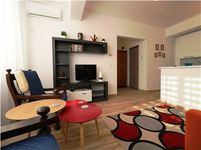 Apartament 1 camera modern Tatarasi - Oancea