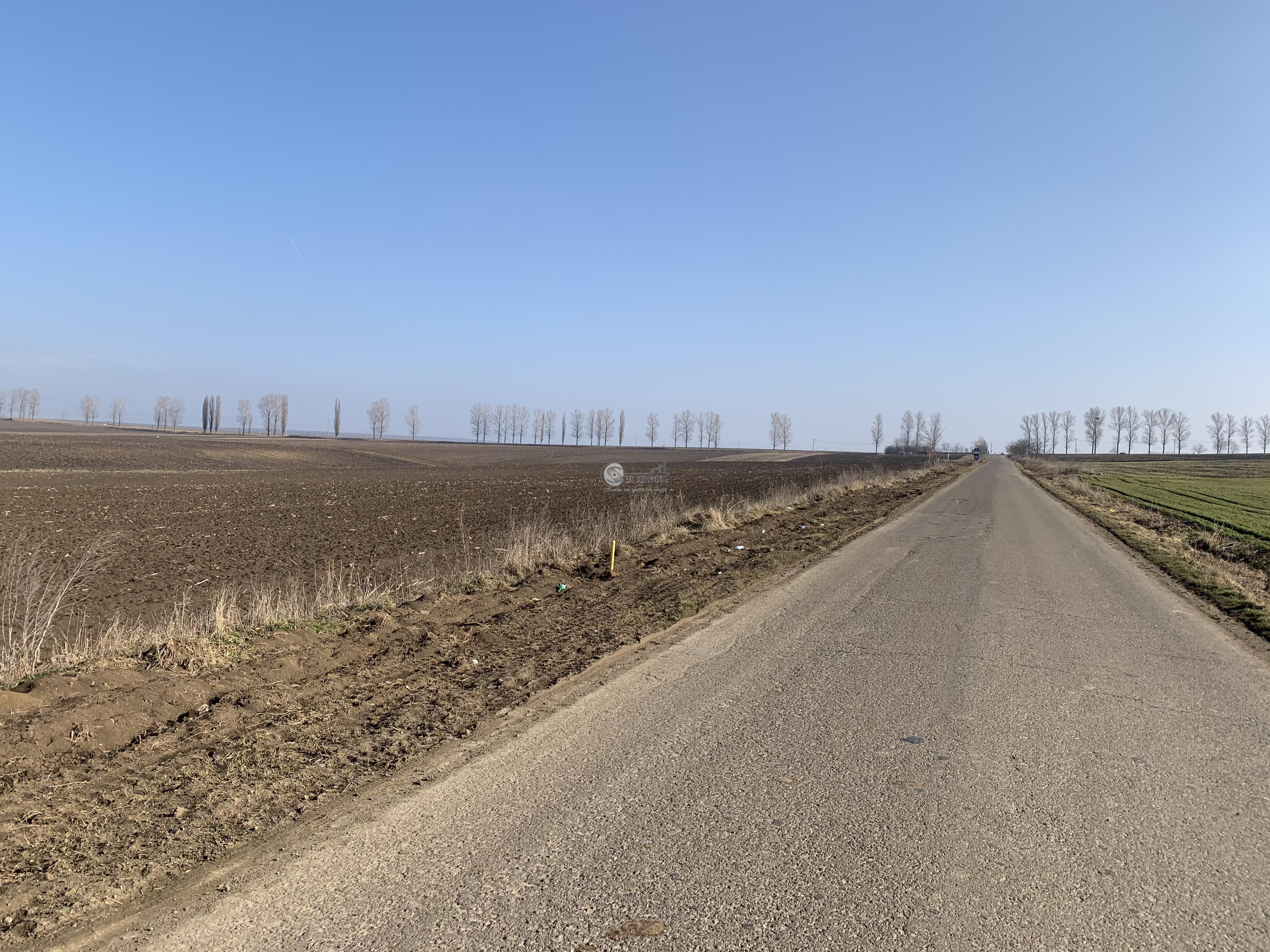 Teren V URSULUI-BOGDANESTI extravilan 10000 mp 39000 euro la asfalt