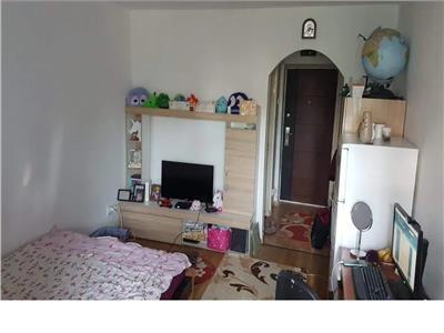 Apartament 1 camera mobilat si utilat, confort 2, Alexandru cel Bun